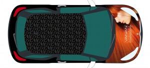 Vanan Citroën DS3 belettering3